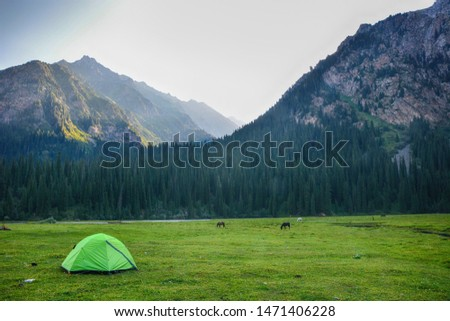 Tent in the mountains against the backdrop of forest and rocks on sunset. #1471406228