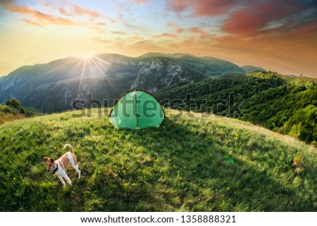 Tent in the nature #1358888321