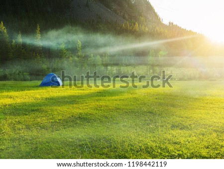 Tent on the grass among the mountains in the fog. Camping at the foot of the mountain #1198442119