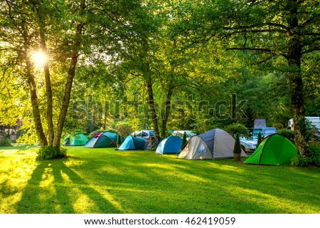 Tents Camping area, early morning, beautiful natural place with big trees and green grass, Europe #462419059