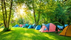 Tents Camping area, early morning. Panoramic landscape.  Natural area with big trees and green grass