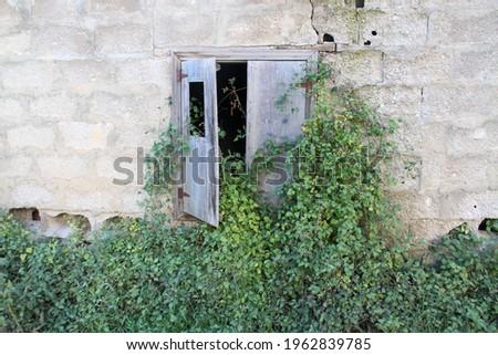 terkedilmiş evin camı ağaç kaplanmış  Stok fotoğraf ©