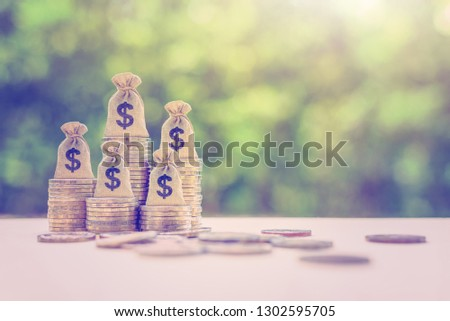 Term fund / time value of money / wealth creation, financial concept : US dollar bags on rising coins, ideas about sustainable fund, asset investment from private income for long term financial growth
