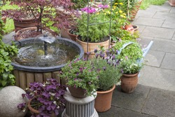 terrace at a allotment  garden with various flowerpots  and a water fountain.