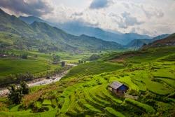 Terrace rice field and mountain view, Sapa, Vietnam
