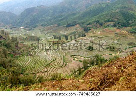Terraced Rice Fields in Sapa, Vietnam Mar 2017. #749465827