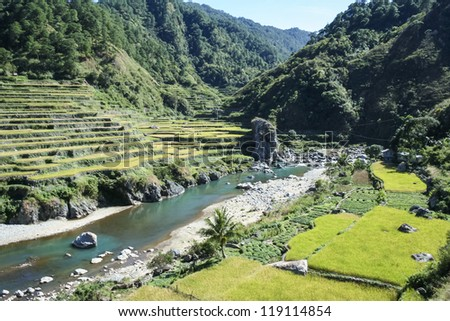 terraced rice fields of bontoc in northern luzon in the philippines