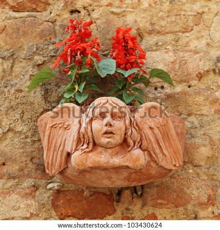 terracotta flowerpot with angelic relief and Salvia splendens (Scarlet Sage, Tropical Sage ) flowers on antique  stone wall