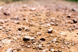 Terrain small road with small rocks on the ground viewed from near the ground. Can be used as a background, texture or wallpaper. Can be used as a concept of dead, dirty, recoverable, ecology, etc