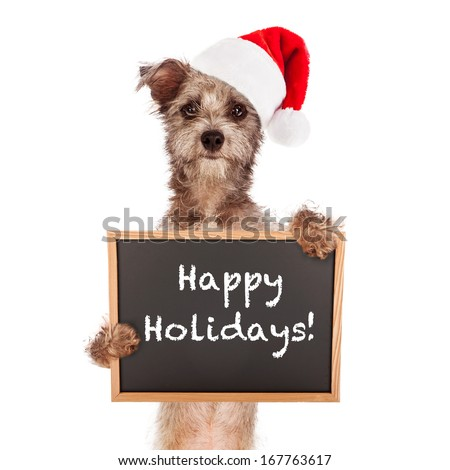 Terrier dog standing against a white backdrop holding a chalkboard sign saying Happy Holidays