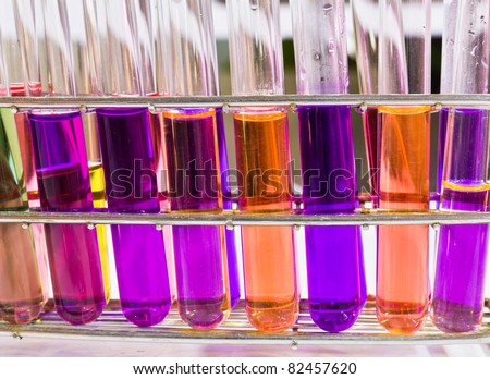Test tubes sit in rack on a bench