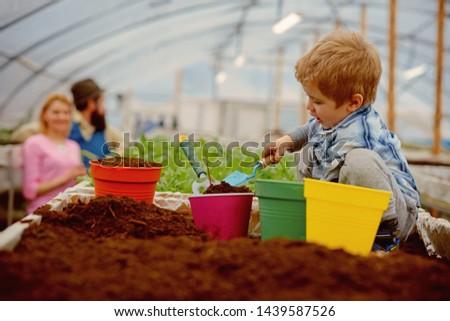 testing soil. small gardener testing soil in greenhouse. farm expert child testing soil. testing soil concept. when will it grow