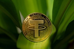 Tether USDT cryptocurrency physical coin placed between plant leaves. Macro Shot.