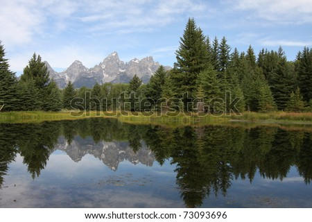 Teton Mountains and forest reflecting in water