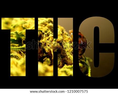 Tetra hydro cannabinol logo on black background, Thc logo, marijuana logo, cannabis logo  #1210007575