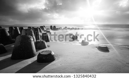 Tetrapods by the sea