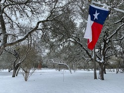 Texas flag against snowy landscape background