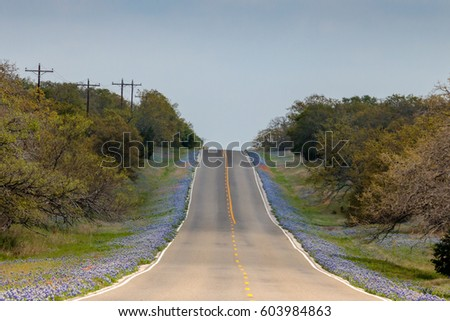 Texas Highway Lined with Bluebonnets
