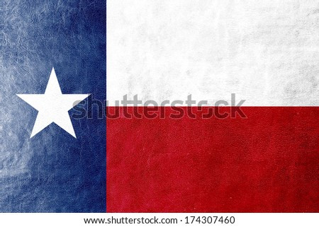Texas State Flag painted on leather texture