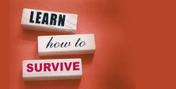 Text on wooden blocks Learn How to Survive. Surviving in crisis times business concept. Surviving during epidemy healthcare concept.