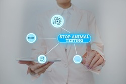 Text showing inspiration Stop Animal Testing. Conceptual photo put an end on animal experimentation or research Lady Holding Tablet Pressing On Virtual Button Showing Futuristic Tech.