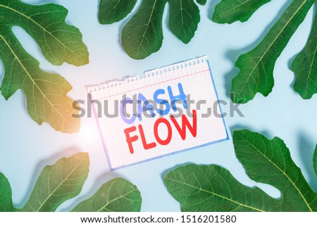 Text sign showing Cash Flow. Conceptual photo Movement of the money in and out affecting the liquidity.