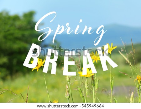 Text SPRING BREAK on nature background. Additional education concept