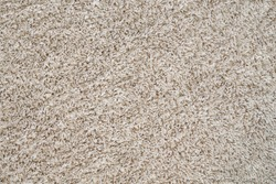 Texture. Abstract background. Fleecy cover of the carpet.