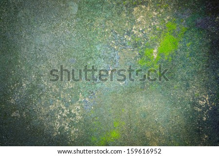 texture and surface of moss growing on the  concrete floor as background