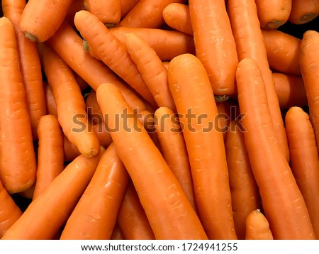 Texture background of fresh large orange carrots.  Seamless carrot pattern.