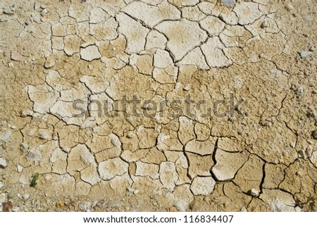 texture background of  land