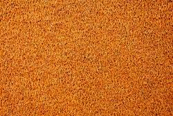 Texture background of the yellow plastic doormat.