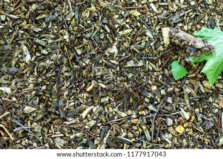 texture background of twigs, sticks, shavings, dust #1177917043