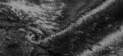 Texture, background, pattern, design, black and white velvet fabric, dense fabric of silk, cotton or nylon with a thick short pile on one side.