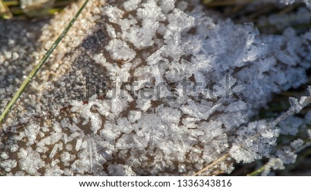 Texture background, pattern. Frost on the sprigs of grass. a deposit of small white ice crystals formed on the ground or other surfaces when the temperature falls below freezing. #1336343816