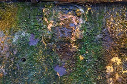 Texture background. template. Antique iron covered with rust and lichen moss. Rusty surface of an iron sheet.