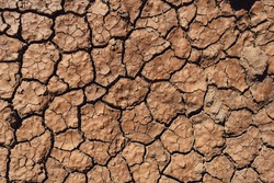 Texture brown dried earth. Wallpaper,Patterns and textures cracked soil, drought of the ground.