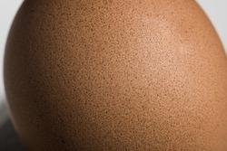 Texture egg  macro - selective focus