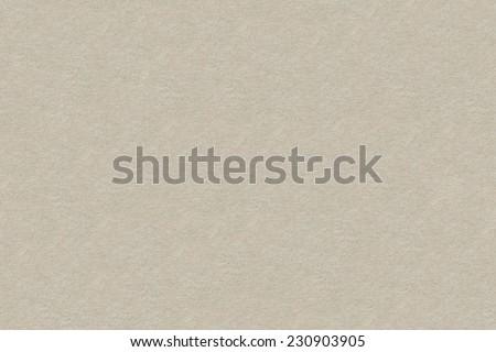 Texture gray Paper.  Background. Copy Space Parchment