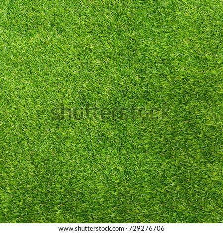 Texture green grass. Background of green turf grass. Texture coating of a football field. Green lawn - Shutterstock ID 729276706
