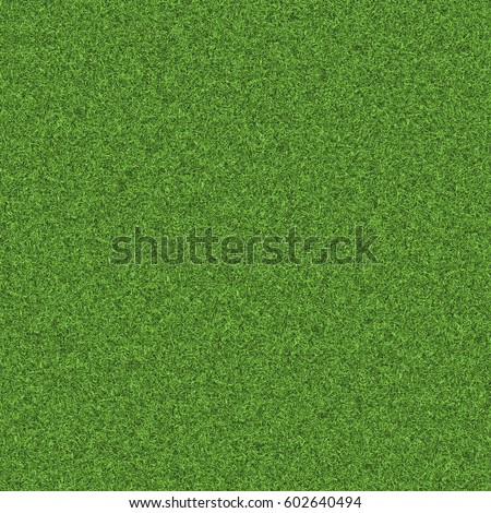 Texture green lawn - Shutterstock ID 602640494