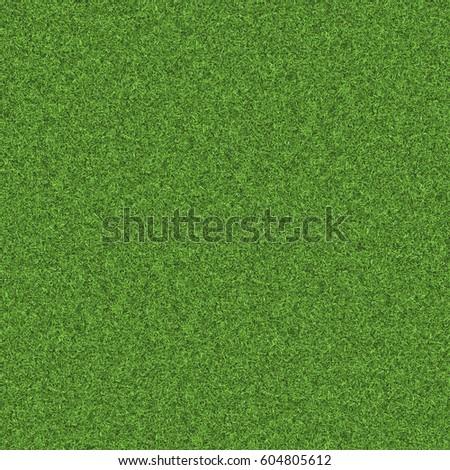 Texture green lawn - Shutterstock ID 604805612
