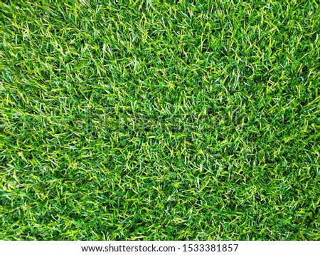 Texture is a redeeming grass grass #1533381857