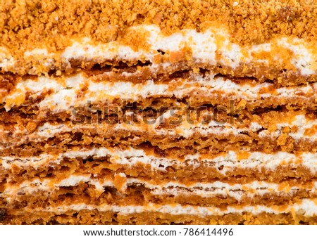 Texture layer of sweet classic homemade layered Honey Medovik cake for background, close-up #786414496
