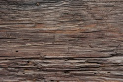 Texture od wooden planks. Wall made of antique wood. Raw wood after years.