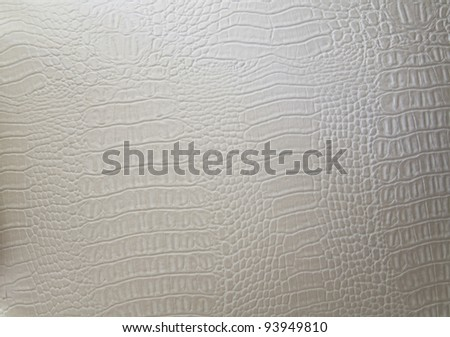 texture of a genuine luxury white hide