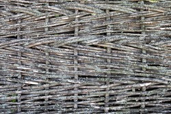Texture of a wooden fence woven from twigs of a rod