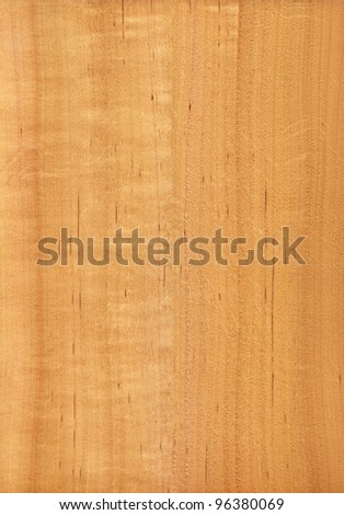 Texture of alder (high-detailed wood texture series)