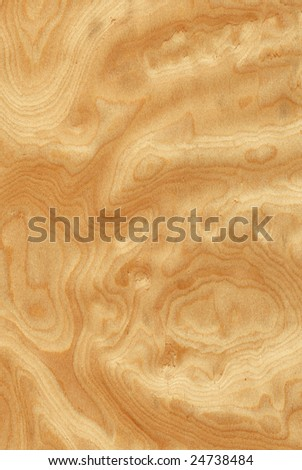 Texture of ash-tree's root sawing (high-detailed wood texture series)