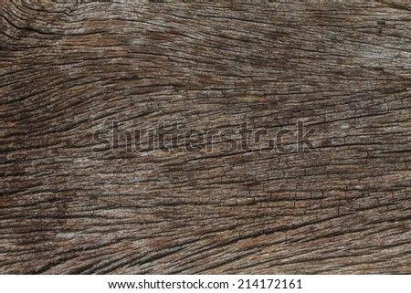 texture of bark wood use as natural background #214172161